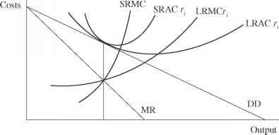 The Short Run Cost Curves Firm